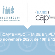 (Handi)Cap'Emploi Working group - Validation and implementation of gateways