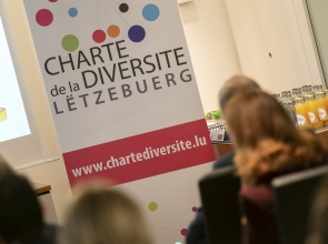 PROGRAMME NATIONAL ESR : PROMOTION DE LA DIVERSITÉ